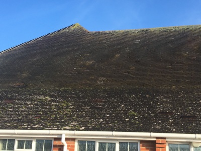 Orpen Hall Roof