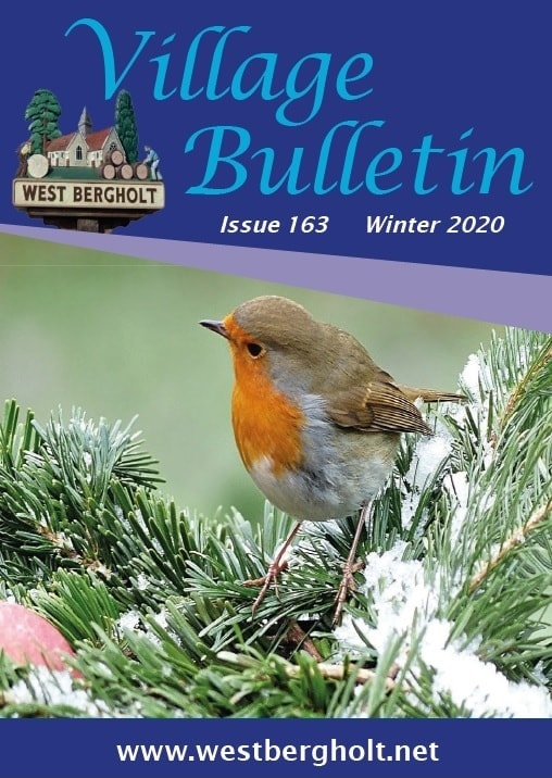 Issue 163 Bulletin Cover