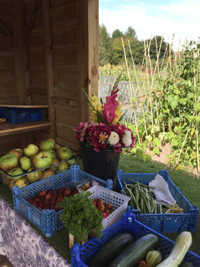 The Allotment Charity Stall